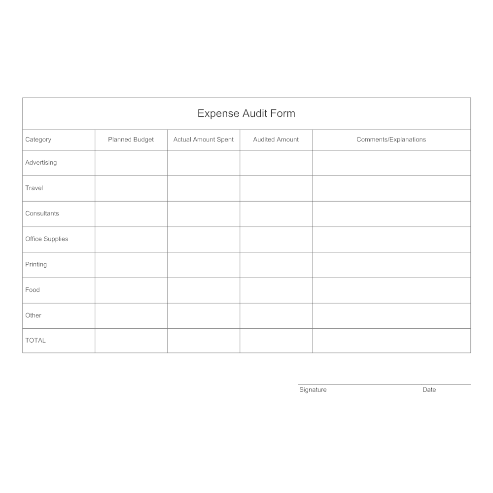 expenseauditformpngbn 1510011097 – Audited Accounts Template
