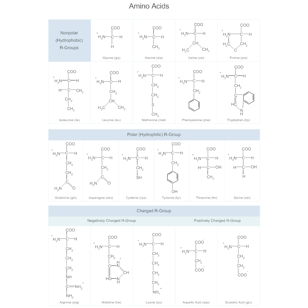 Example Image: Amino Acids Chart