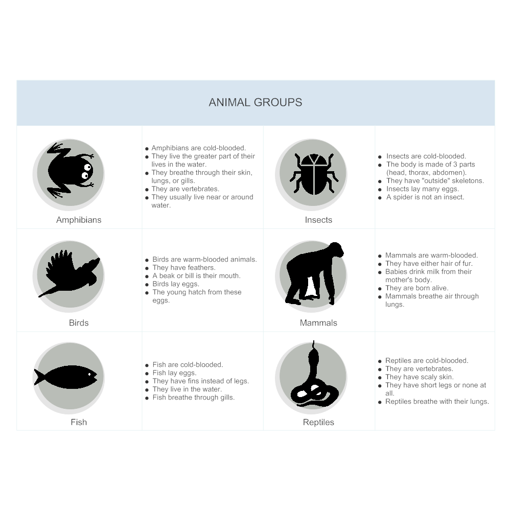 Example Image: Animal Group Illustration