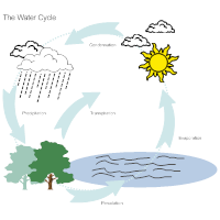Biology diagram examples water cycle diagram ccuart Gallery