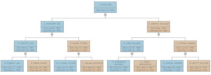 draw family tree diagram
