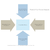 Five Forces Analysis Examples