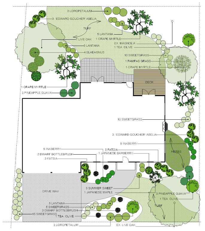 Garden Layout Drawing