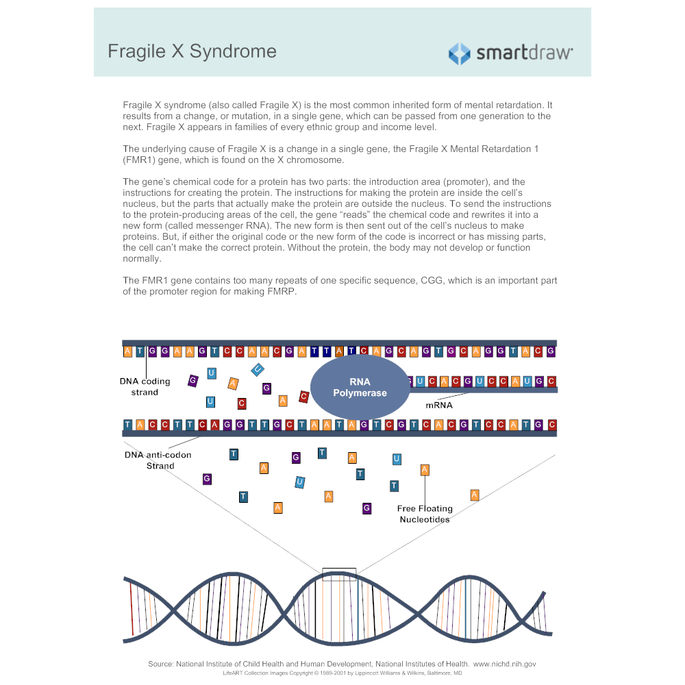 Example Image: Fragile X Syndrome