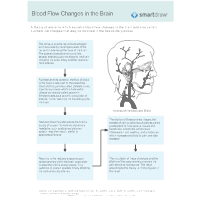 Blood Flow Changes in the Brain