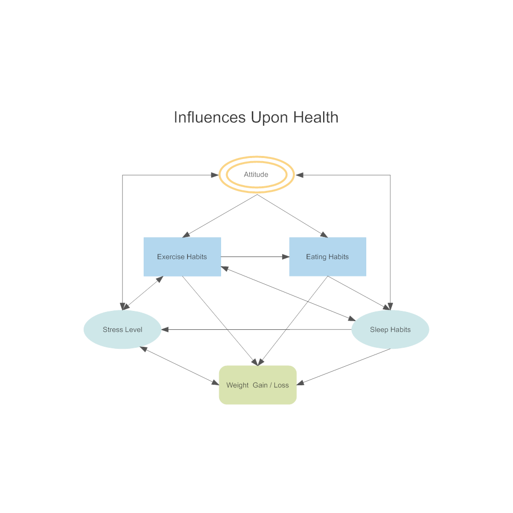 Example Image: Health Influence Diagram