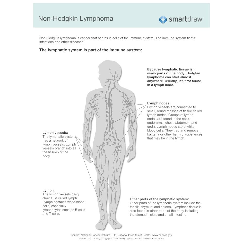 Wunderbar Lymph Und Immunsystem Ideen - Menschliche Anatomie Bilder ...