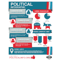 Political Infographic 3
